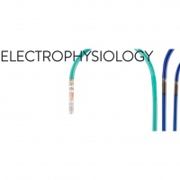 Akademia Elektrofizjologii