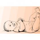 Diagnostyka USG mózgowia noworodka - kurs dla początkujących