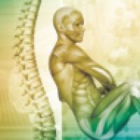 L2 Kręgosłup lędźwiowy, biodro (Kinetic Control)