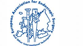 EAES 2020 - 28th Annual Congress