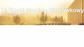 IX Śląski Meeting Siatkówkowy w Katowicach