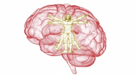 VII Zachodniopomorskie Dni Neurochirurgii i Neuroanestezjologii